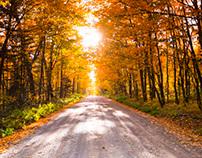 Fall Photography 2013