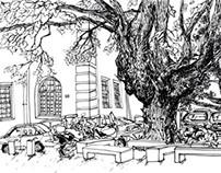 2013 Drawings