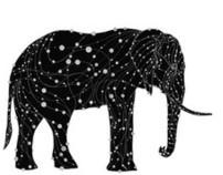 The Elephant Constellation