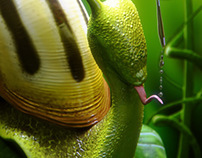 The drunk snail