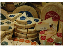 Shatto Milk Company  -  Artisan Cheese Labels
