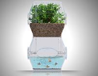 The Aqualibrium Garden