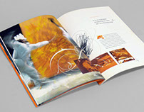 Avance Cologe Corporate Brochure