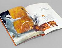 Avance Cologe Corporate Brochure