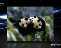 Apresentação em Vídeo - Getty Images Brasil