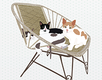 Cats on a cane chair