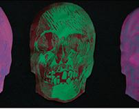 12 Skulls