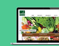 Choose Ontario Website