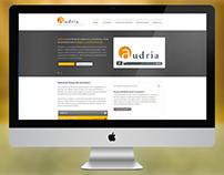 Audria, la firma de auditores y consultores