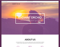 Radiant Orchid - One-page Website Mockup