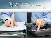 By the Numbers Virtual Accounting Services