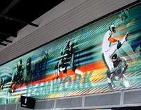 Philadelphia Eagles: Concourse Graphics