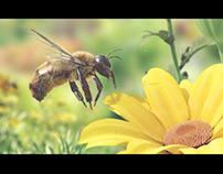3D bee !