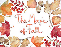The Magic of Fall