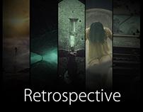 RETROSPECTIVE 2013