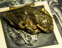 Mummified Frog 3D