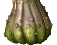 Alien Fruit