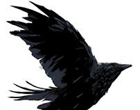 Crow_utc