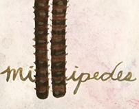 questionare about millipedes