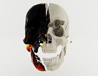 Skull Smashed