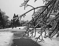 Icestorm 2013 // Black & White Collection