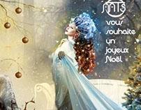 Merry Chrismas 2013 !