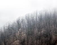 – dense fog –