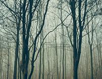Nebel #01