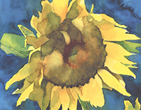 Amy's Sunflowers (Watercolor)
