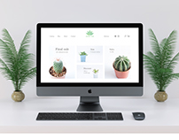 Minimalistic design of Cactus shop