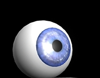 First 3D Eyeball Model