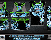 2013 CHEER DESIGNS COLLECTION- DYE SUBLIMATION