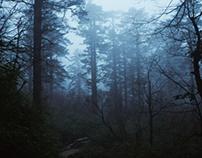 Emeishan / through the clouds