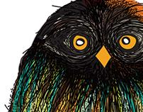 OWL 1 ,,,