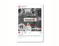 Advertising Project for Gandour Mastic Gum