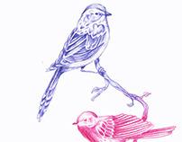 BIRDS II