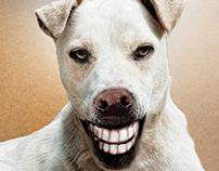 Buddy smile Love