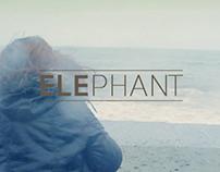 Elephant Album Promo