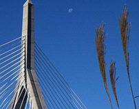 Zakim Bridge in the Fall