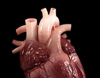 CGI Heart