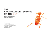 Spatial Architecture of the Ant