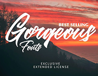 Best Selling Gorgeous Fonts