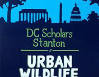 Urban Wildlife Garden