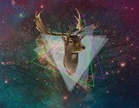 Space Reindeer 2012
