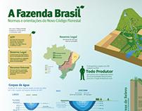 Fazenda Brasil - infografia sobre o código florestal