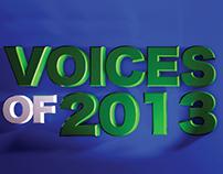NIGERIA: Voices of 2013