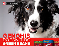Purina – Shopper Marketing Campaign for Value Brands