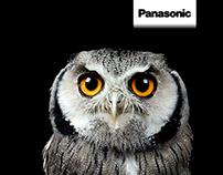 Panasonic: Advert