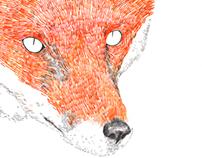 Fox, la guineu