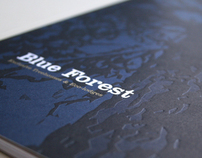 Blue Forest Treehouse brochure and web design